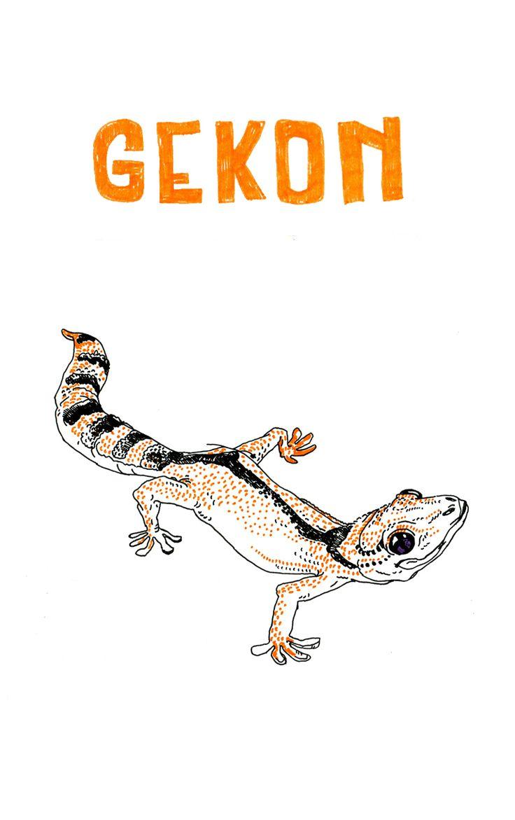 Gekon  #cute #animal #drawing