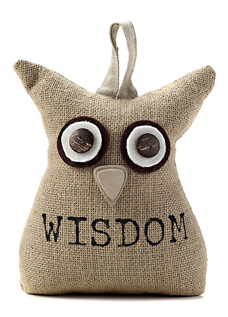 Contemporary Home Door Stopper Wise Owl