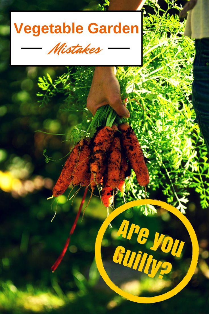 248 best karen u0027s garden images on pinterest garden ideas garden