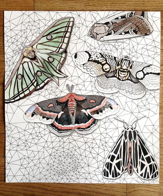 Line Holtegaard on Etsy. Original watercolor illustration of moths