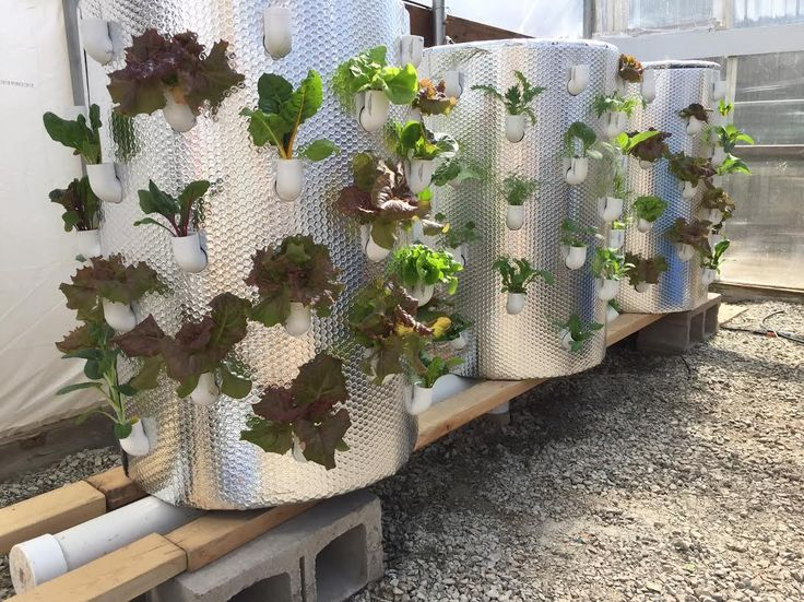 167 Best Images About Vertical Gardening On Pinterest Gardens Comment Please And Green Walls