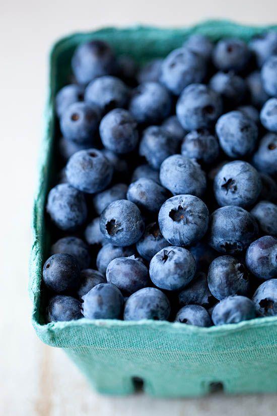Nova Scotia High BushBlueberries - www.kellyneil.com