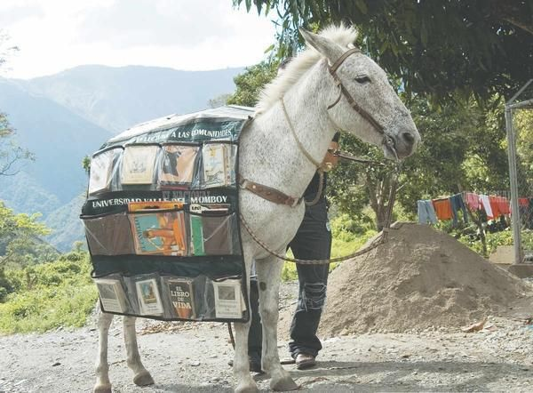 Biblioteca equina! The Donkey Book-Mobile in Venezuela Just when I think I've seen everything . . . !