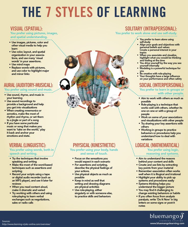 The seven styles of learning; visual-spatial; aural-auditory/musical; physical-kinesthetic; verbal-linguisticl; logical-mathematical; solitary-intrapersonal; social-interpersonal;