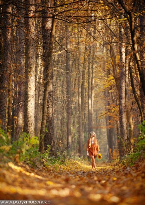 Autumn by Patryk Morzonek #fall#autumn#enchanted forest#forest nymph