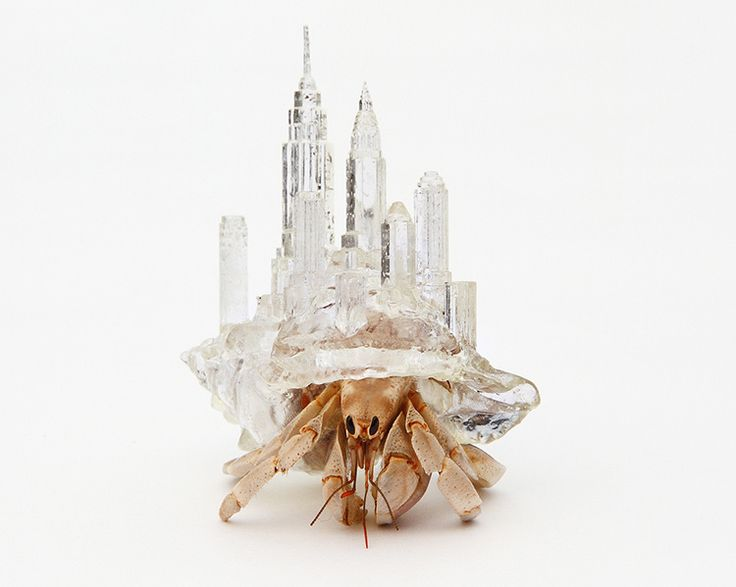 Deze heremietkreeften dragen 3D-geprinte miniaturen van wereldsteden op hun rug | The Creators Project