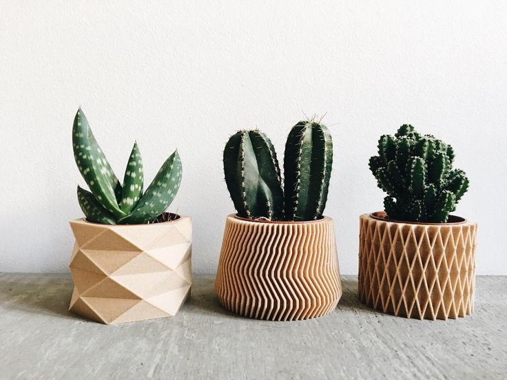 Shop Set of 3 small geometric Pots / Planters Design Hygge printed in Wood perfect for succulents or cacti ! Original gift Mother's Day from MINIMUM DESIGN in Vases & pots, available on Tictail from Wooden Planters, Indoor Planters, Ceramic Planters, Planter Pots, Planter Ideas, Journal Du Design, Small Potted Plants, Cactus Y Suculentas, Cacti And Succulents