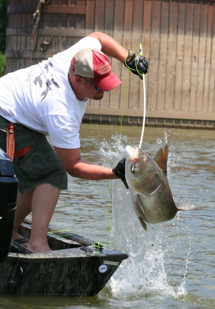 Put more rough fish in your boat by shooting the best bowfishing bows, arrows and equipment