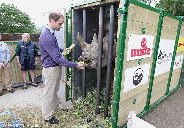 William is a patron of Tusk Trust and has long been involved in raising awareness surrounding issues of conservation