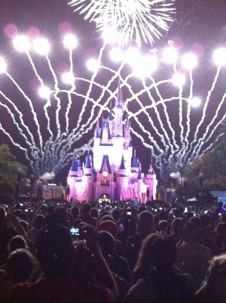 The Magic Kingdom, Orlando, August 2011