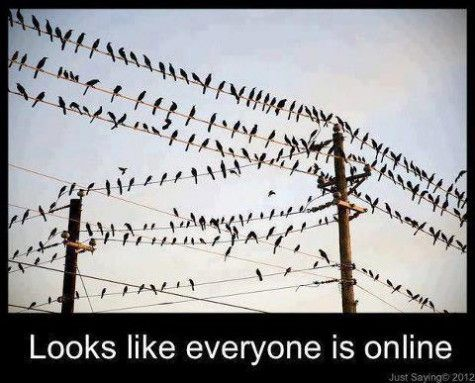 Imagine if there really were little birds that represented every tweet on twitter and that every time a new tweet was posted another bird would have to squeeze onto the wire to sit among his fellow tweeters! Now imagine the droppings you would find under all of those wires and imagine that the droppings are just a fraction of the energy and the space required to hold, send and store all of the information from each of those tweets!
