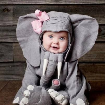 Adorable Babies in The Cutest Sushi and Animal Costumes! 1 - https://www.facebook.com/different.solutions.page