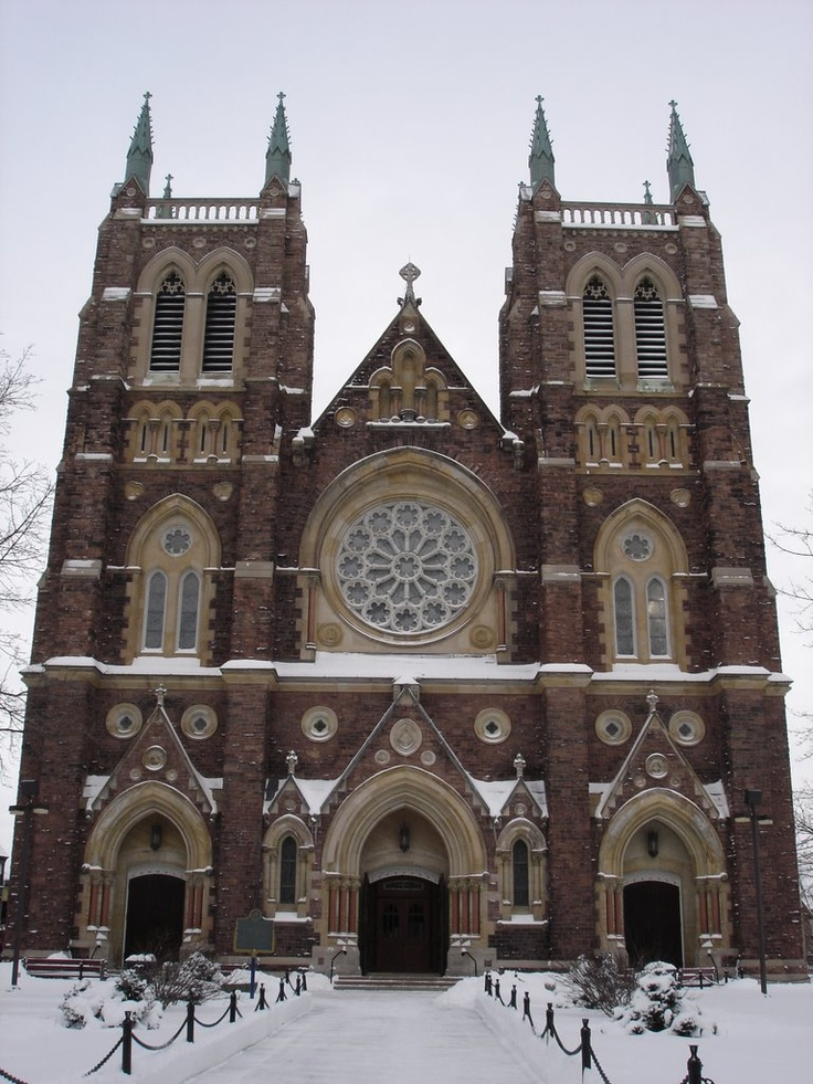 St. Peter's Cathedral Basilica, London, Ontario Canada. I have been in this church and it is beautiful.