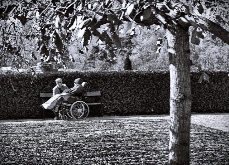 BWSTOCK.PHOTOGRAPHY  //   #invalid #wheelchair #caretaker