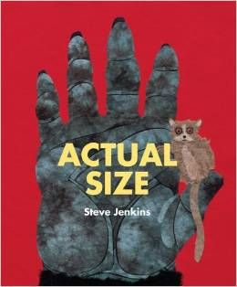 This book fits with standards of measurement, presentation, and connections.
