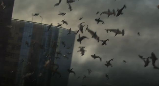 sharknado   ... IS A TRAILER FOR SHARKNADO . READ THIS EXCERPT FROM THE PRESS RELEASE