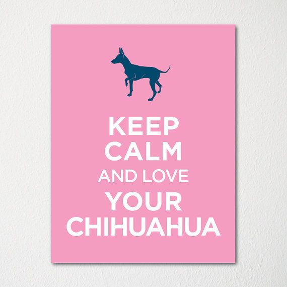 Keep Calm and Love Your Chihuahua - 8x10 Fine Art Print - Choice of Color - Purchase 3 and Receive 1 FREE - Custom Prints Available