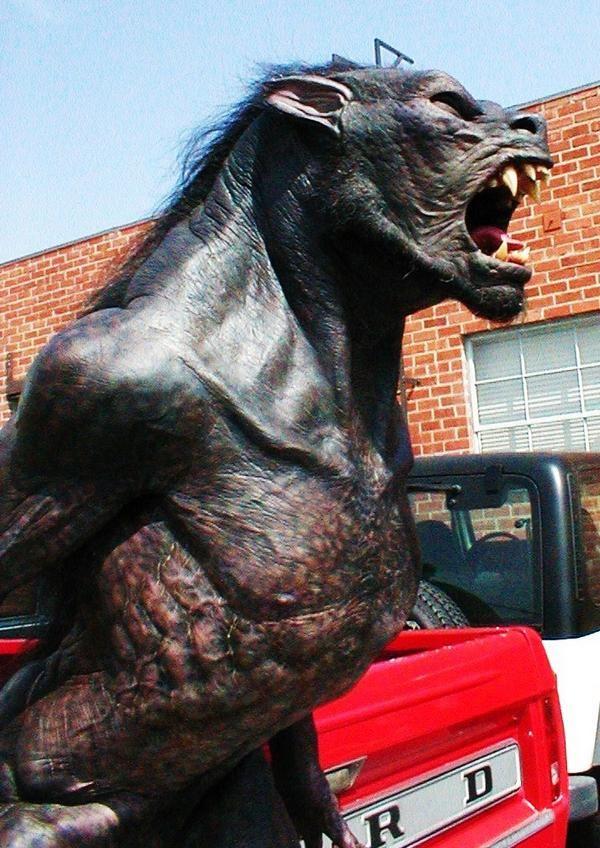 Shapeshifter Lycan #werewolf #shapeshifter #werewolves #fantasy #art