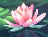 Yoga Meditazione volontariato   Fondazione Art of Living Italia