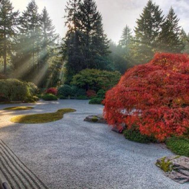 oooh, yes, zen garden in the back yard!