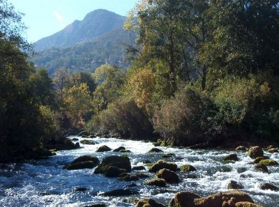 52 best images about fly fishing in california on for Putah creek fly fishing