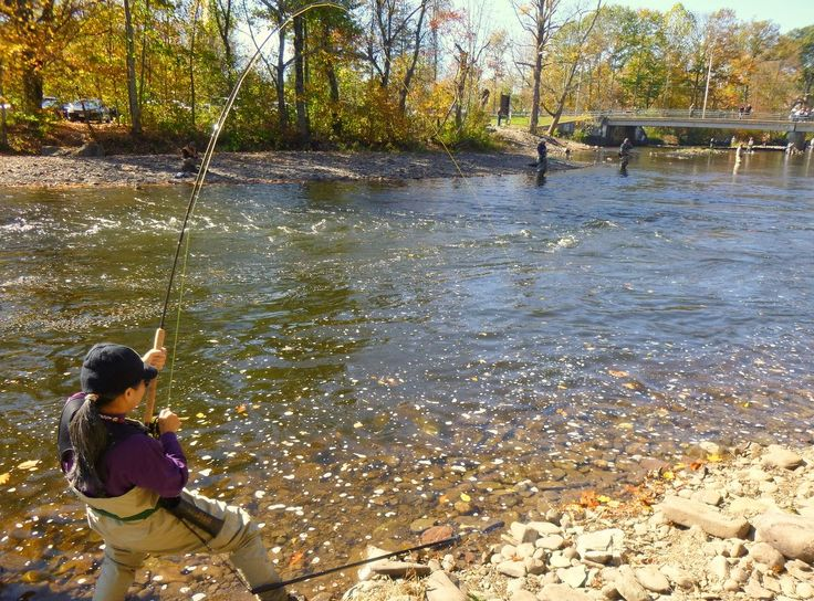 1000 ideas about potomac river on pinterest west for Potomac river fishing spots