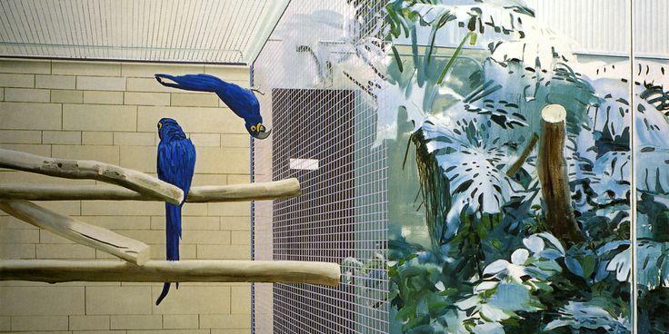 Rétrospective Gilles Aillaud au musée des Beaux-Arts de Rennes -Perroquets - 1974 - 200x250 cm - collection Alvarez