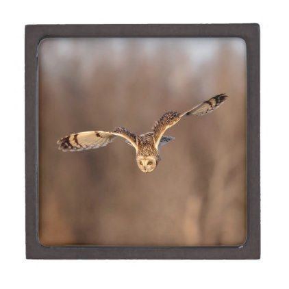 Short-eared owl diving towards the ground gift box - individual customized designs custom gift ideas diy