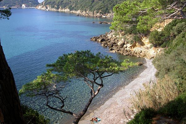 beach of Viticcio