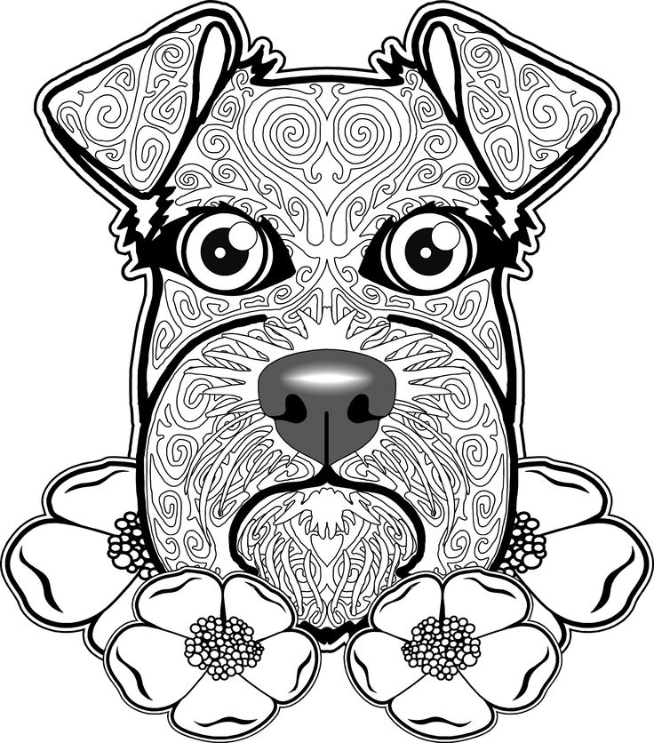 Dog Coloring Page Pages Free For