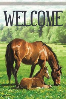Welcome/Mother & Foal Garden Flag FlagTrends CLASSIC FLAGS by Carson
