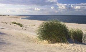 Fototapeta Consalnet 655 - Piaszczysta plaża