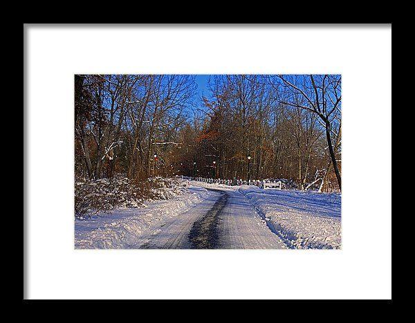 wildwood park, toledo, ohio, landscape, winter, snow, lights, fence, michiale schneider photography