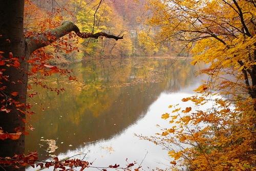 Lillafüred, Hámor Lake, Bükk Mountains, Hungary, Carpathians
