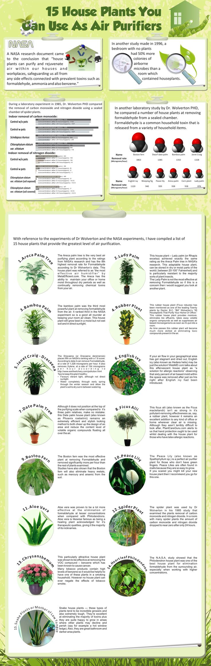 nasa guide to air filtering houseplants pdf