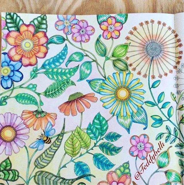 Adultcoloringbook Coloredpencil Eljardinsecreto Secretgarden Johannabasford