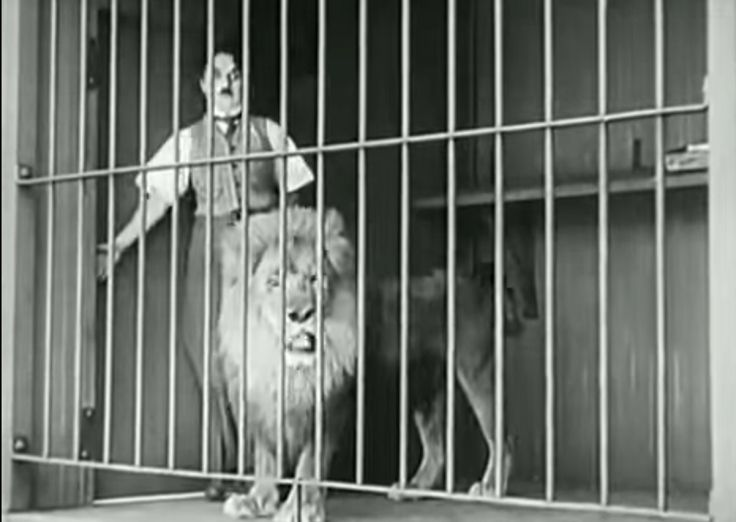Funny Charlie Chaplin-Lion Cage Funny Charlie Chaplin Stunning comedy....... Really its full of fun....... You must watch it....  http://bit.ly/1ZaO2EJ  www.howley.in  #funny #charlie #chaplin #amazing #comedy #fun #watch #howley
