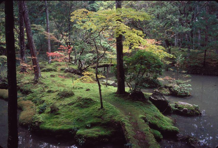 Jardins du Kokedera (temple des mousses) à Kyoto | Flickr - Photo Sharing!