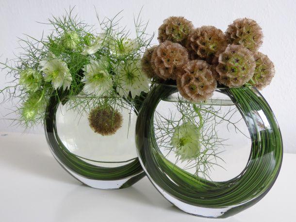 Floral Art : Nigella orientalis et Nigella damascena (graines)