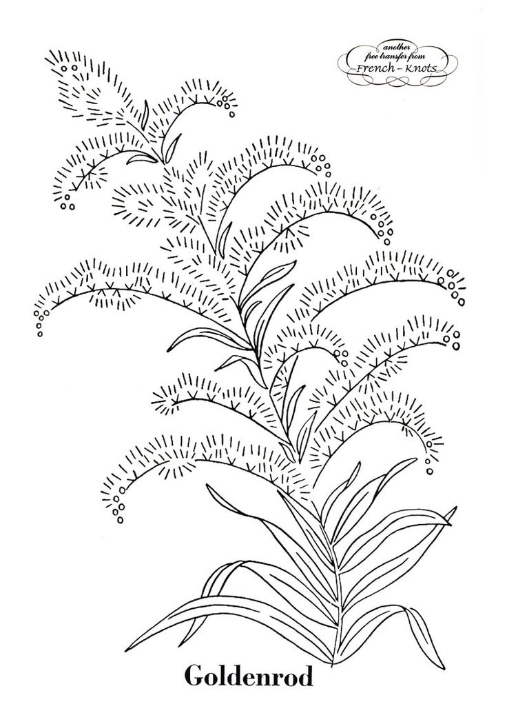 Found on french-knots comGoldenrod Coloring Page