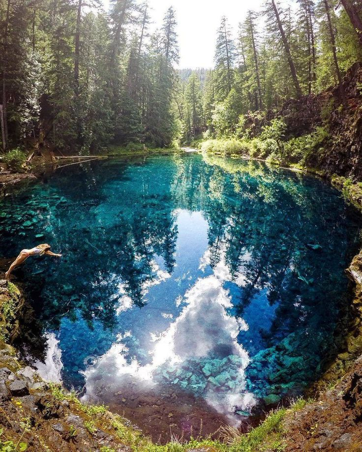 Jump in! Tamolitch Blue Pool, Oregon