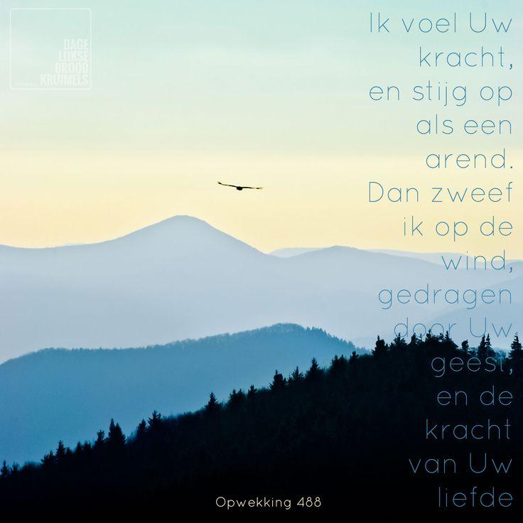 Ik voel Uw kracht, en stijg op als een arend. Dan zweef ik op de wind, gedragen door Uw geest, en de kracht van Uw liefde. Opwekking 488 Het woordje UW spreekt voor zich. Het is Zijn kracht, Zijn geest en Zijn liefde. God wil dat we in volledige afhankelijkheid van Hem leven. Wanneer we dat... http://www.dagelijksebroodkruimels.nl/quotes-christelijke-muziek/opwekking-488/