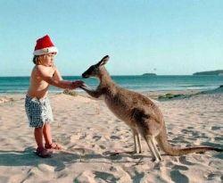 #Christmas in Australia