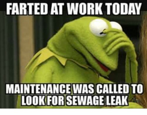 Funny Tuesday Work Meme : Best kermit images ha ha funny stuff and funny