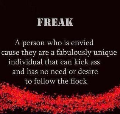 Freak - A person who is envied cause they are a fabulously unique individual that can kick ass and has no need or desire to follow the flock.