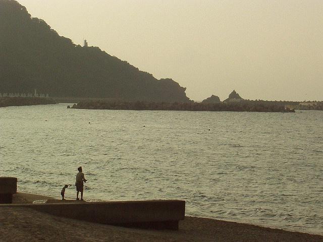 Hamasaka beach by n_sky, via Flickr