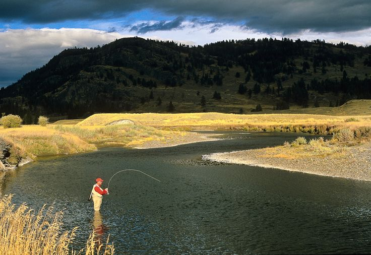 Slough creek yellowstone national park fly fish for Fly fishing yellowstone