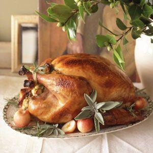 Thanksgiving Turkey Tips from Martha Stewart