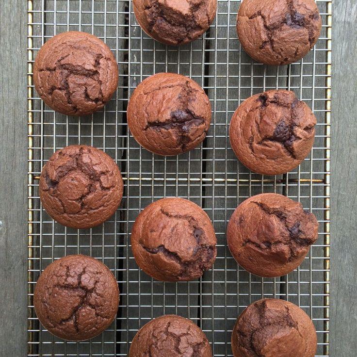 Chocolate Chunk Blueberry Muffins robynpatton.com