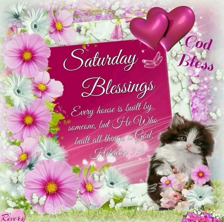 Saturday Blessings (Hebrews 3:4)
